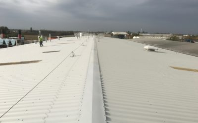 Industrial Roof Repair | G's Fresh Beetroot